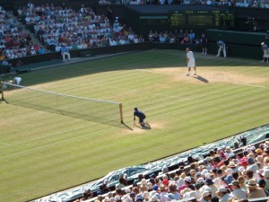 Federer's Wimbledon chances tennis roger federer
